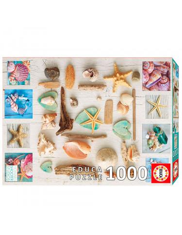 Puzzle 1000pz Collage De Caracolas