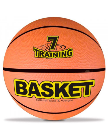 Basket Training Nº7